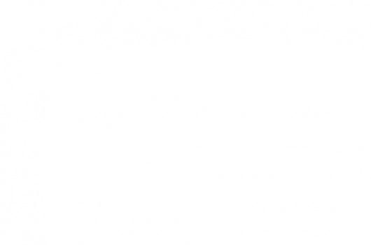Hak holowniczy do Jeep Wrangler JK